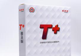 T+领先的互联网企业移动管理