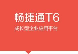 > 软件产品 > T6产品线