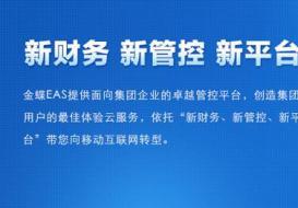 金蝶EAS 大型集团企业管理系统