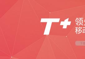 > 软件产品 > T+产品线